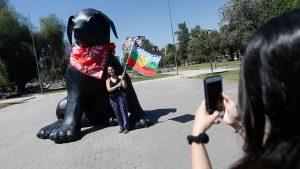 Negro Matapacos llegó a Viña tras gira por parte de la Región de Valparaíso