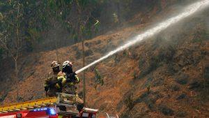 Mantienen Alerta Roja para la comuna de Mariquina por incendios forestales