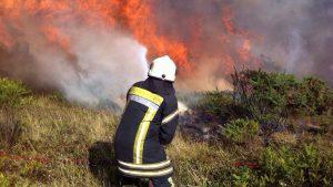 Más de 18.700 hectáreas han sido consumidas por incendios forestales en la Región de la Araucanía