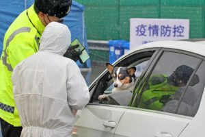 Hong Kong informó el primer caso positivo de coronavirus en un perro