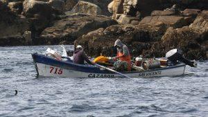 Informe anual reveló mejora en la actividad pesquera de recursos como jurel y bacalao
