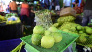 Precio del limón se estabilizará en Semana Santa y ferias libres mantendrán su funcionamiento