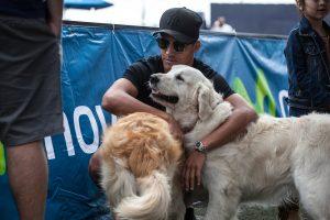 Chappi y Laika: Alexis Sánchez ya le puso nombre a sus dos nuevos perros