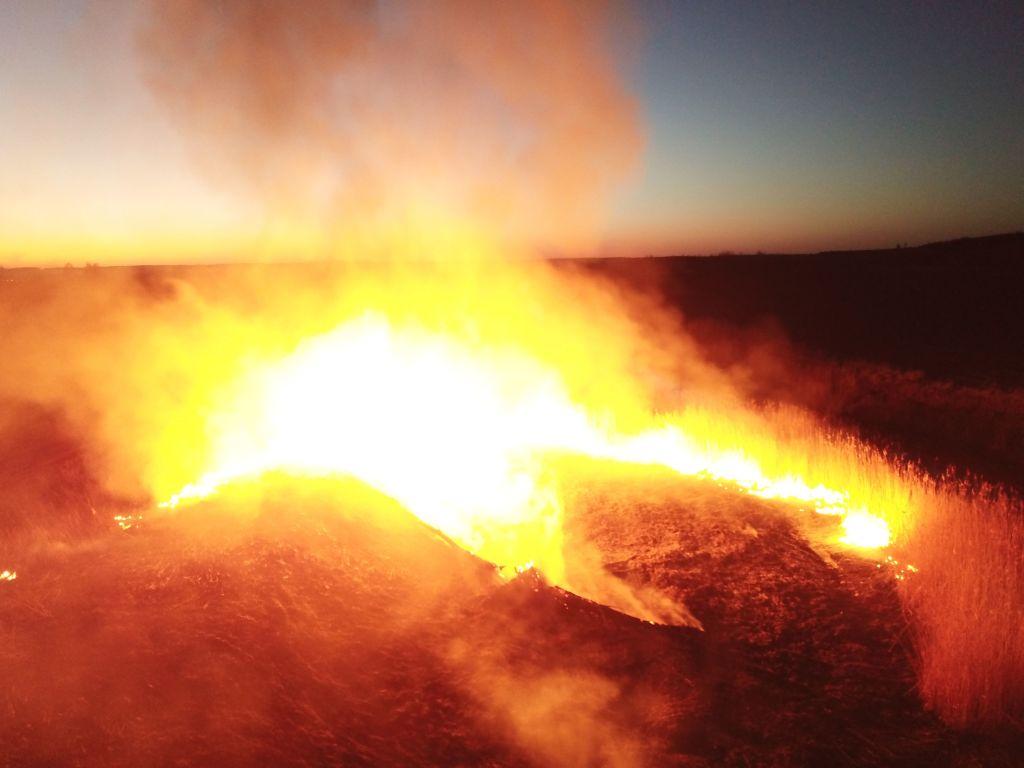 Uno de los focos del incendio forestal que afecta a la zona de Chernóbil