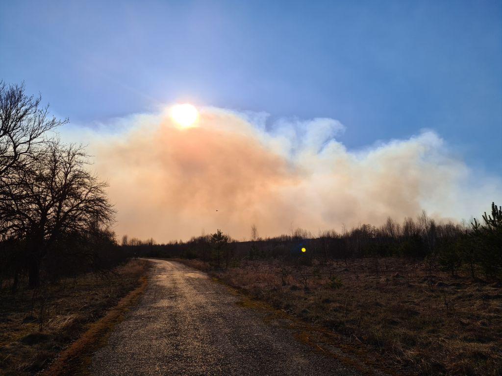 El fuego consume los bosques cercanos a la accidentada central nuclear de Chernóbil