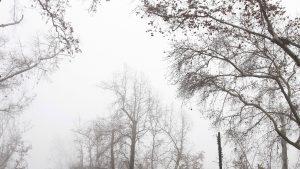 Cubierto y frío: revisa el pronóstico del tiempo para este martes en Santiago