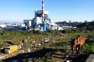CNE autorizó a Enel adelantar desconexión final de la central termoeléctrica Bocamina I