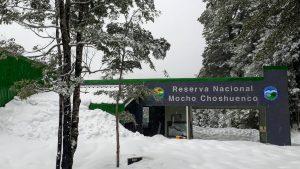 Conaf cerró de forma parcial el Parque Nacional Villarrica Sur y la Reserva Nacional Mocho Choshuenco por Fase 2 en Panguipulli