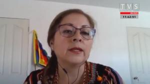 """""""¡Terremoto!"""": El susto que se llevó expositora durante el temblor de Coquimbo en la comisión de Constitución del Senado"""