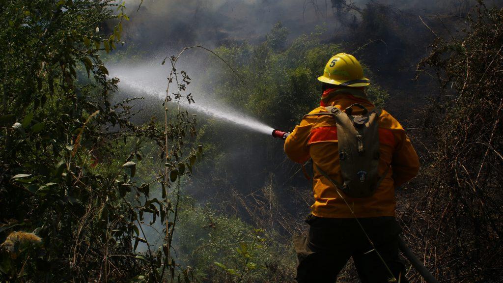 Biobío: Onemi decretó alerta roja tras incendio forestal en Tirúa