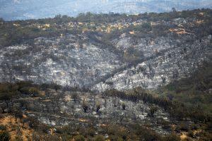 Onemi canceló la alerta roja por incendios forestales en la Región de Valparaíso y decretó alerta amarilla