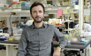 Destacado científico chileno es acusado de manipular imágenes en estudios: involucran al actual ministro de Ciencias