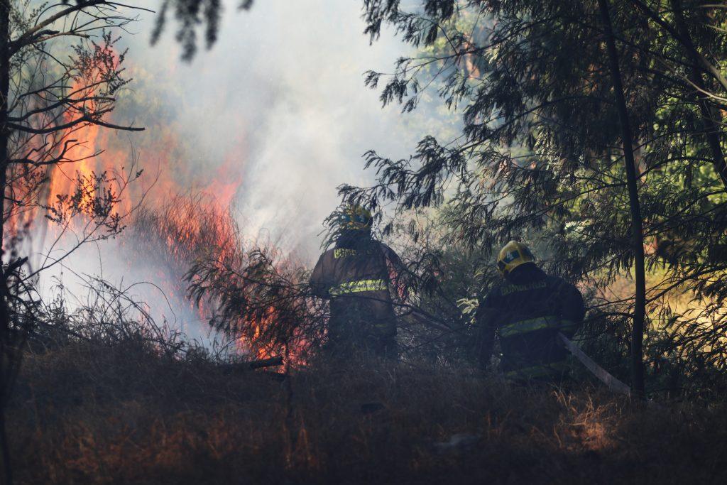 Alcalde de Curacaví confirmó que Carabineros detuvo a tres personas por incendio forestal en la comuna