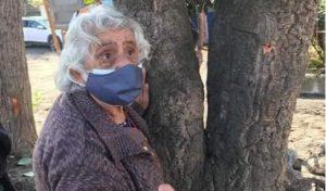 No será talado: Trasplantarán árbol de alcornoque protegido por anciana en Talcahuano
