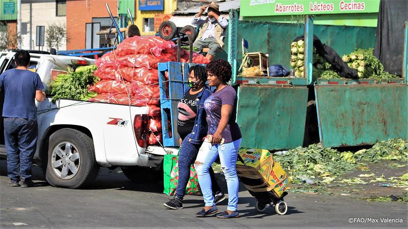 Proyecto busca recolectar alimentos descartados y en buen estado de Lo Valledor para hacer un menú solidario