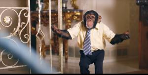 PETA se lanzó contra The Offspring y su nuevo videoclip por utilizar a dos chimpancés