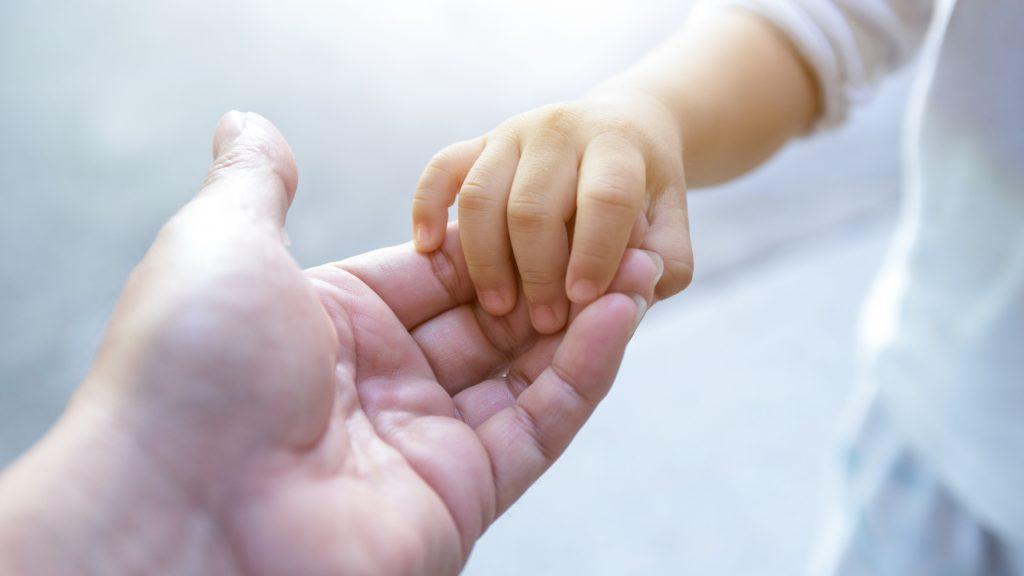 Fundación realiza colecta virtual para ayudar a la adopción en Chile