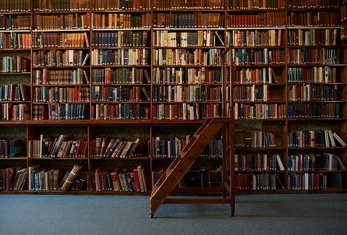 Entrelíneas: Reflexiones sobre libros y política con Pancho Mouat