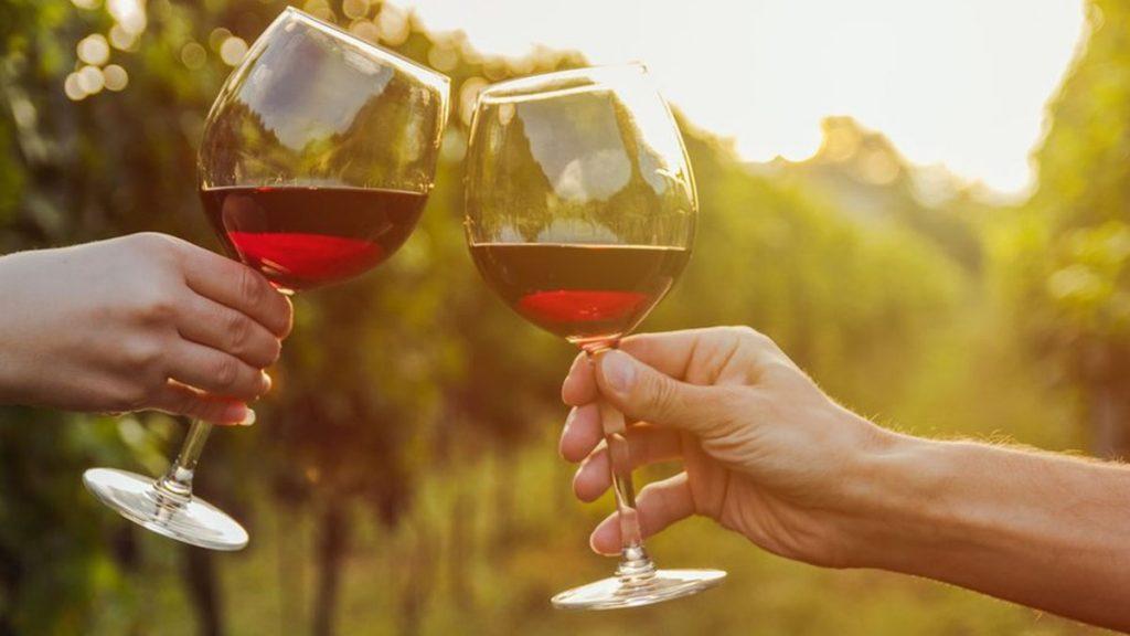 Este sábado se celebra el Día Nacional del Vino chileno