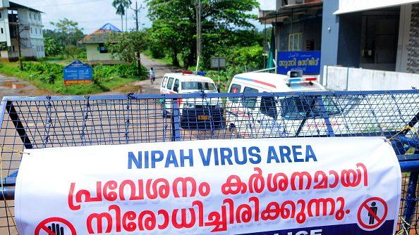 ¿Qué es el virus Nipah?: La enfermedad con potencial epidémico que alerta a la India