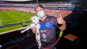 Mexico es el primer país en tener un estadio con un sector especial para mascotas